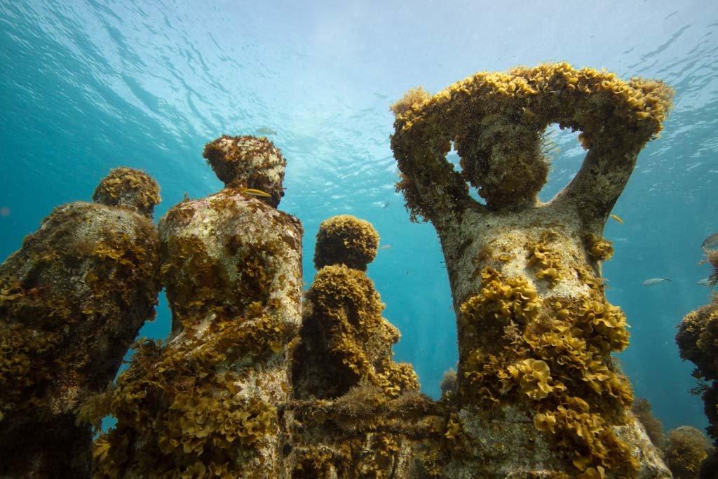Обязательно посетите подводный музей