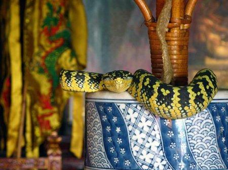 Змеиный храм Сунгай Клуанге