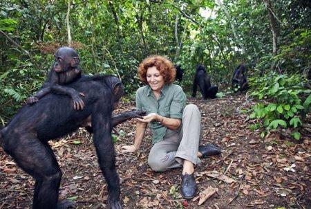 Конго для туристов