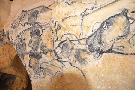 Копия пещеры Шове с рисунками первобытных людей откроется уже 25 апреля