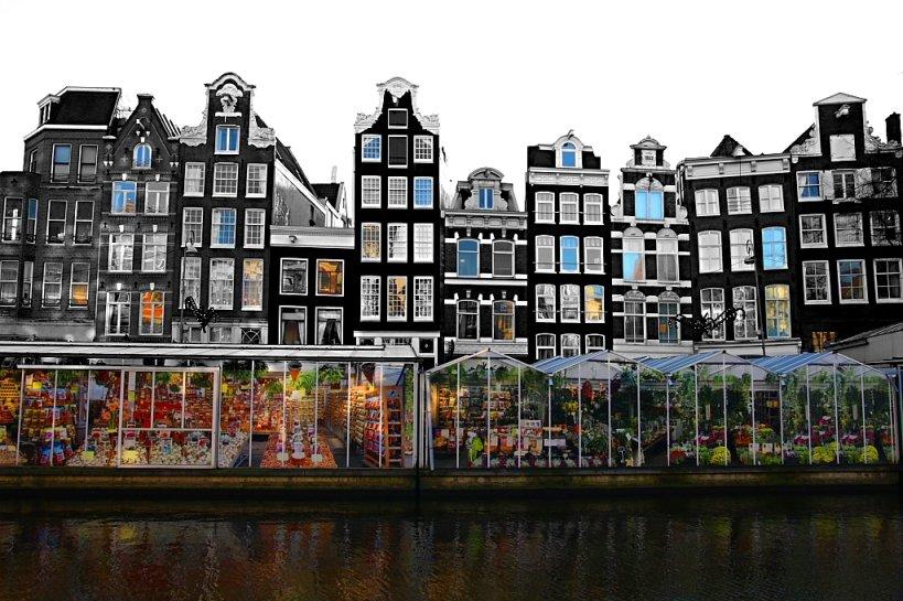 Цветочный шопинг в Амстердаме