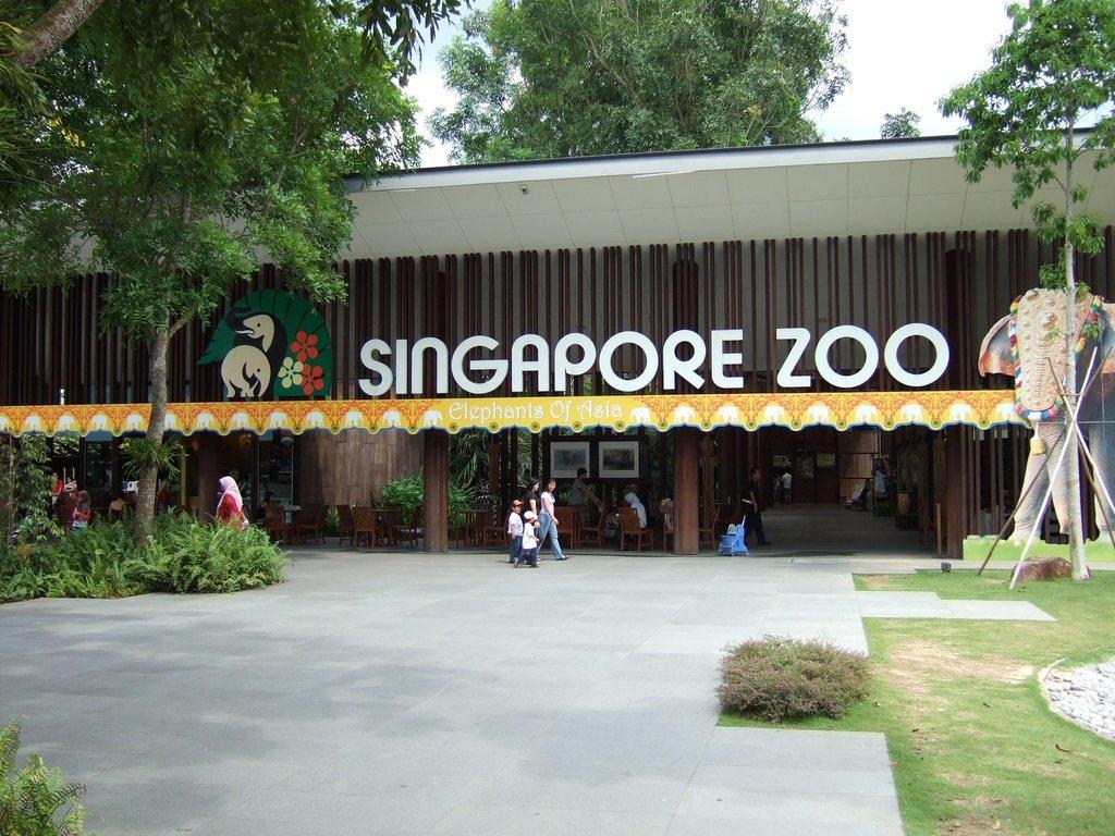 Зоопарк в Сингапуре. Краткий обзор