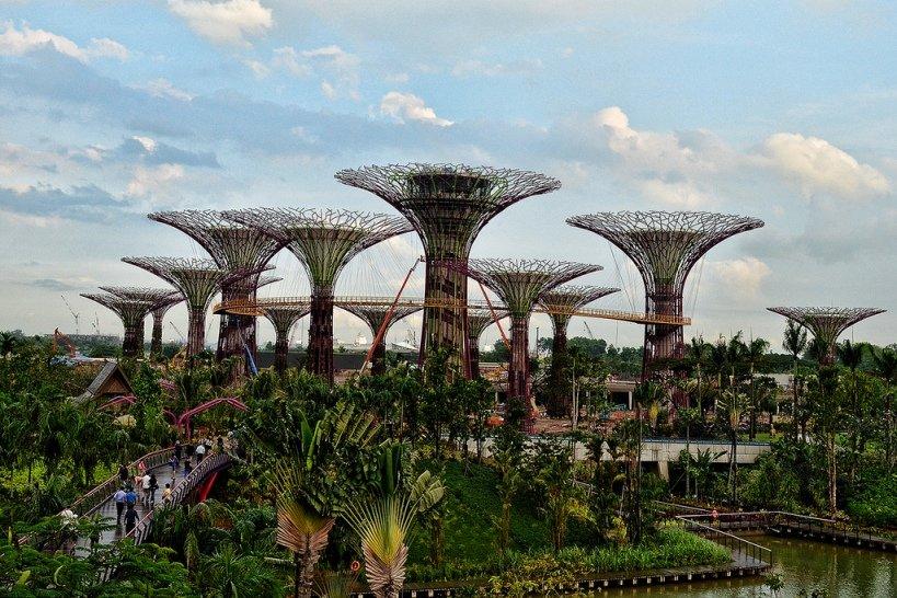 Сингапурский парк супер-деревьев