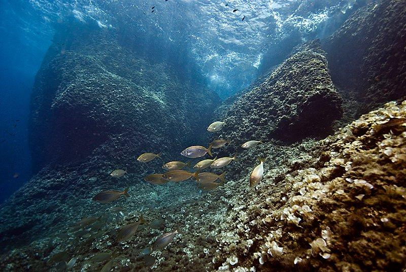 Уникальный подводный исторический парк в Хорватии