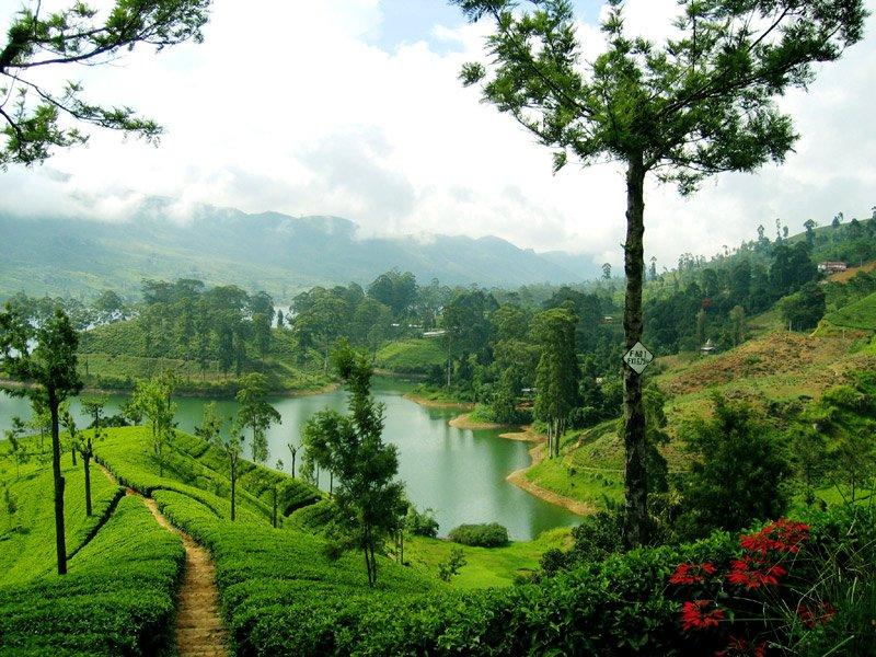 Шри-Ланка — где ступала нога Будды