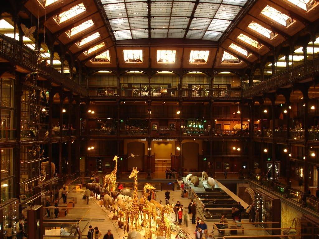 5 интересных для детей музеев в Париже