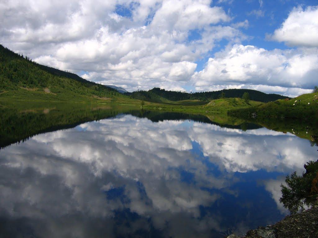 Мертвое загадочное озеро в Сибири