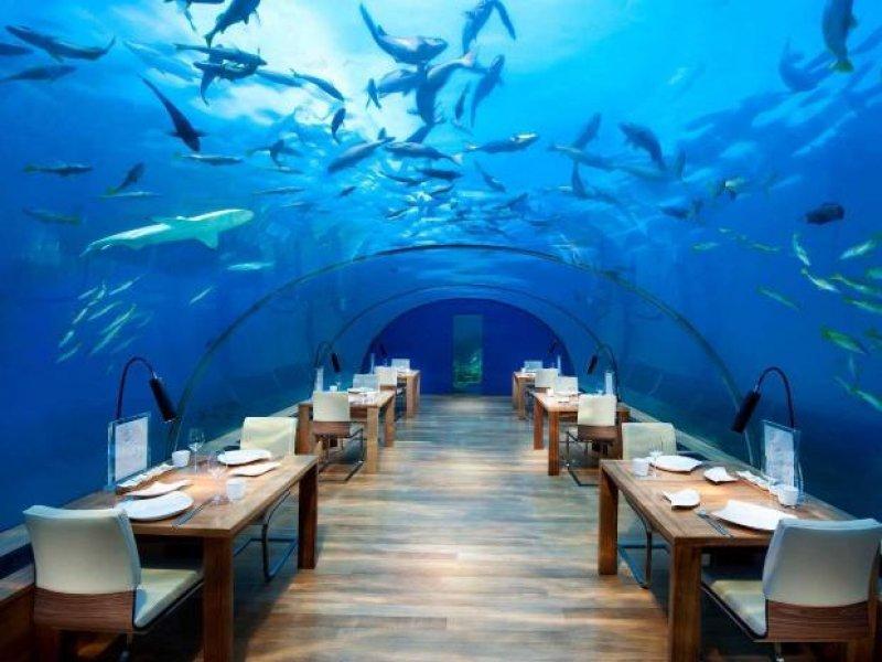 Залечь на дно: 8 подводных мест для развлечений