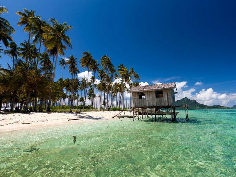 Удивительный остров Борнео