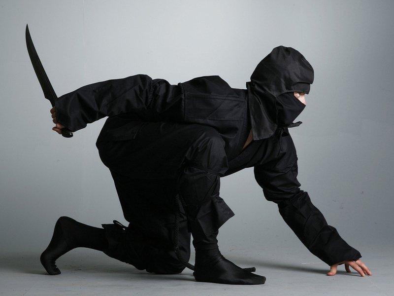 Туристов в Японии будут развлекать ниндзя